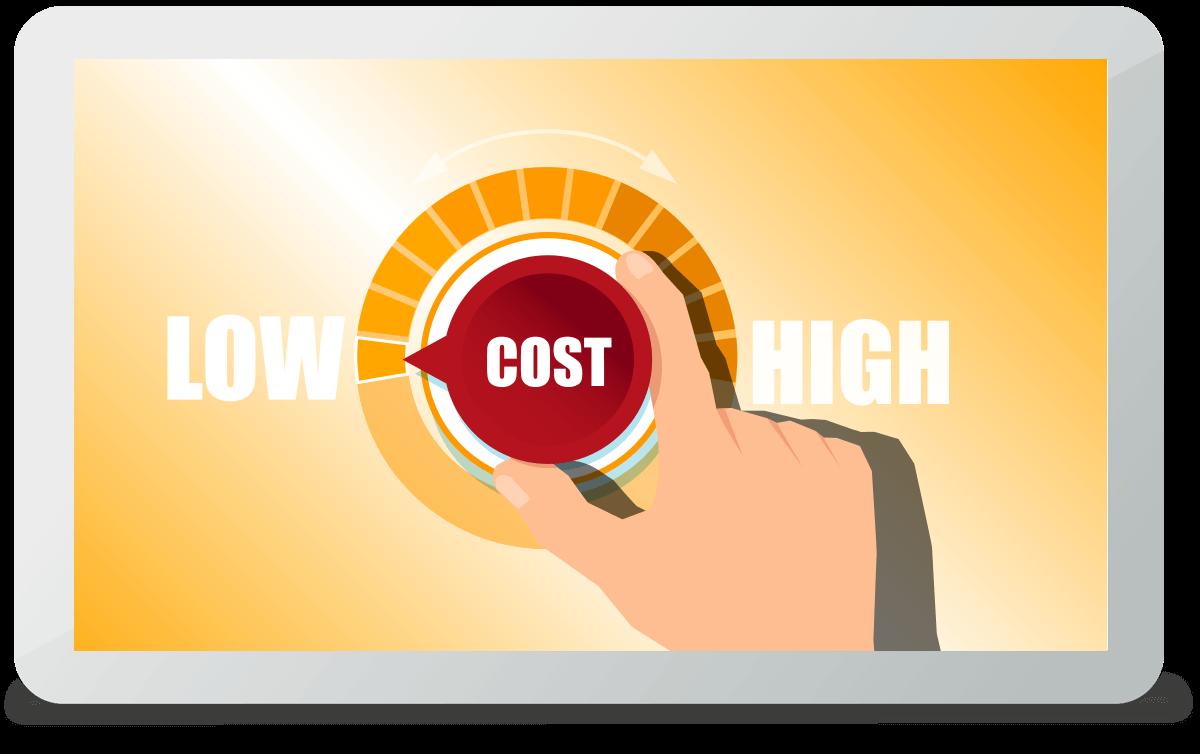 Keine Kosten für die Anschaffung von teurer Hard- und Software durch die Bereitstellung der Software in unserem Rechenzentrum